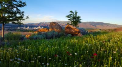 Reno Spring Skyline